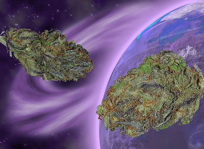 space station marijuana - photo #16